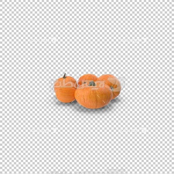 تصویر سه بعدی دوربری کدو حلوایی