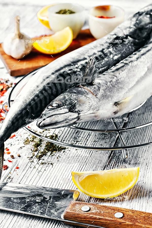 ماهی, گوشت ماهی, غذای ماهی ادویه جات, کباب ماهی