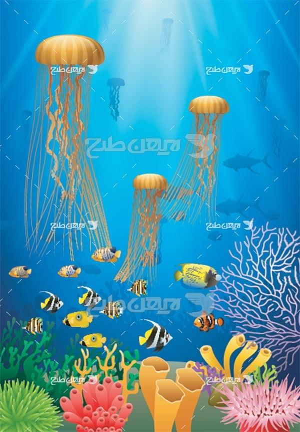 وکتور ماهی و عروس دریایی