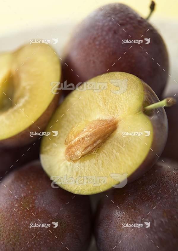 عکس میوه شلیل