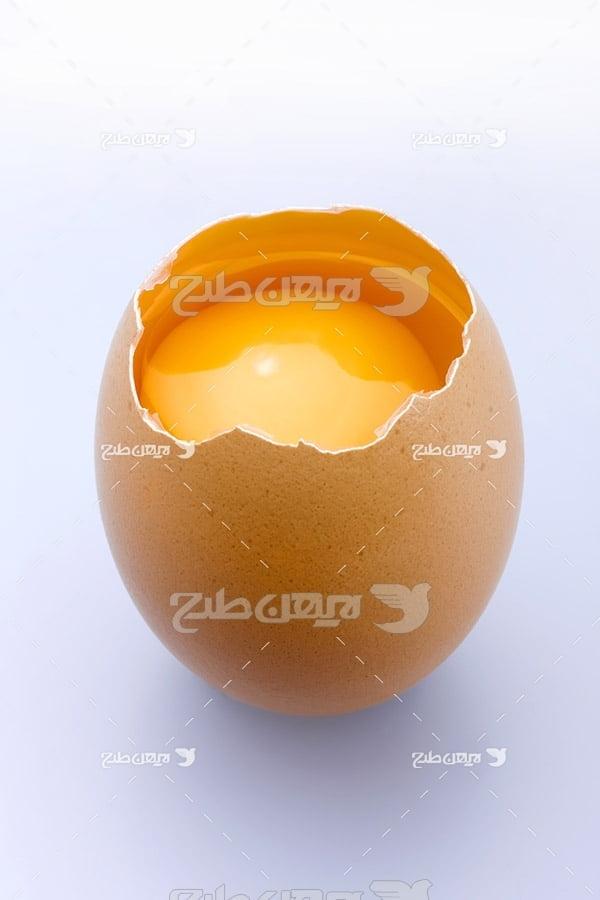 تصویر تخم مرغ و زرده