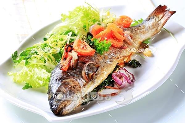 عکس غذای ماهی کباب و بشقاب