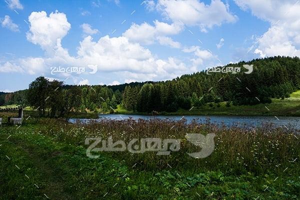 عکس منظره گل و گیاه و رودخانه