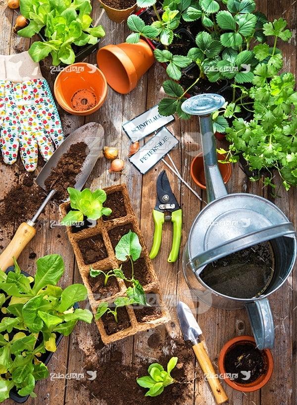 عکس لوازم باغبانی