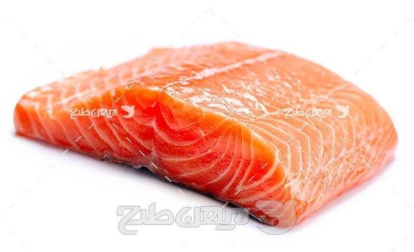 ماهی،گوشت ماهی,غذای ماهی