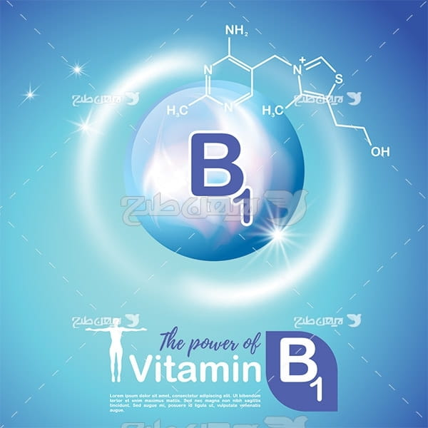 وکتور ویتامین ب1