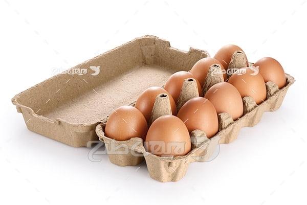 جعبه تخم مرغ محلی قهوه ای