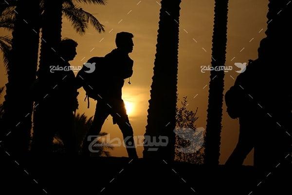 عکس ضد نور پیاده روی اربعین