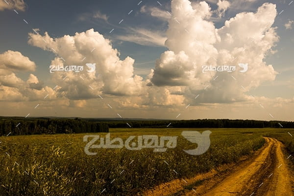 مزرعه کشاورزی و منظره
