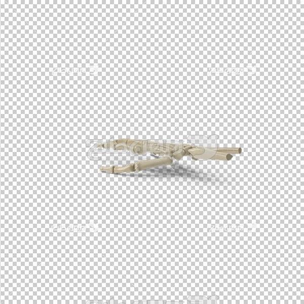 تصویر دوربری سه بعدی اسکلت دست