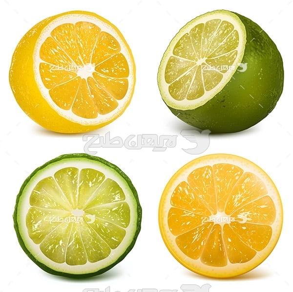 وکتور لیمو و لیمو شیرین