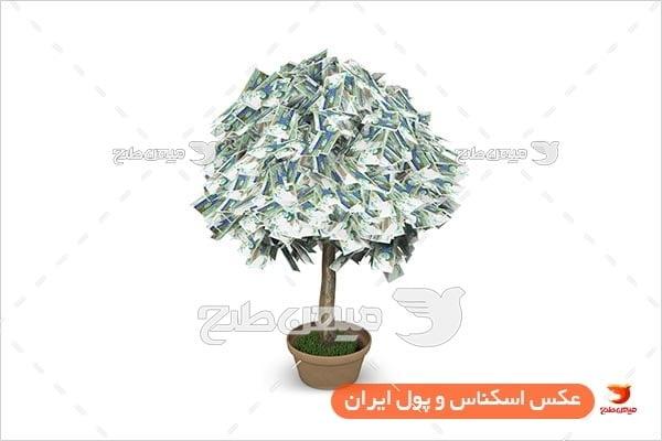 عکس اسکناس 1000 تومانی به شکل درخت