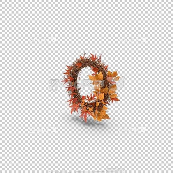 تصویر سه بعدی دوربری حلقه گل