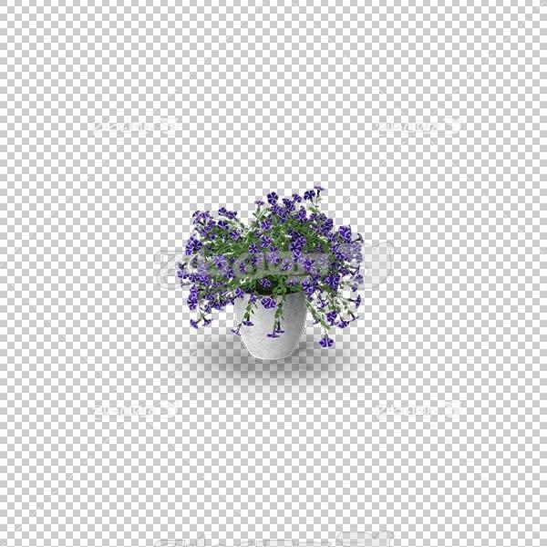 تصویر سه بعدی دوربری گل و گلدان