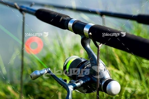 تصویر ماهی گیری