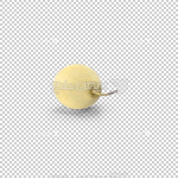 تصویر سه بعدی دوربری گلابی