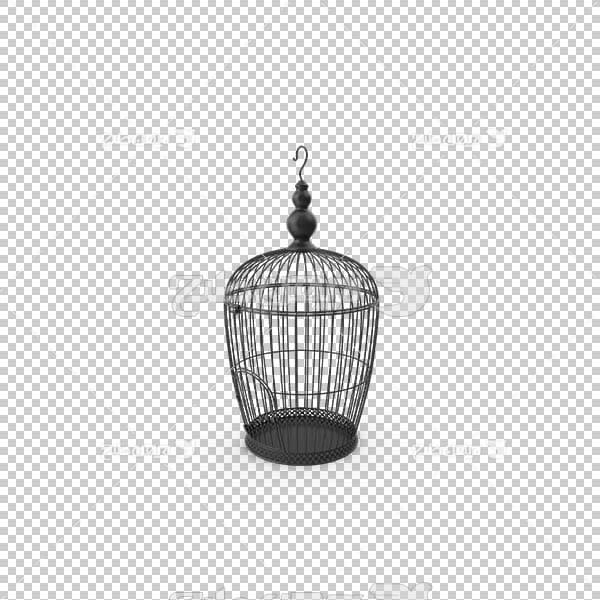 تصویر سه بعدی دوربری قفس پرنده