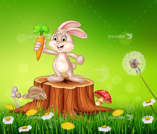 وکتور خرگوش و هویچ