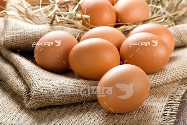 تصویر تخم مرغتصویر تخم مرغ محلی قهوه ای و گونی