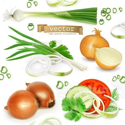 وکتور کاراکتر سبزیجات پیاز