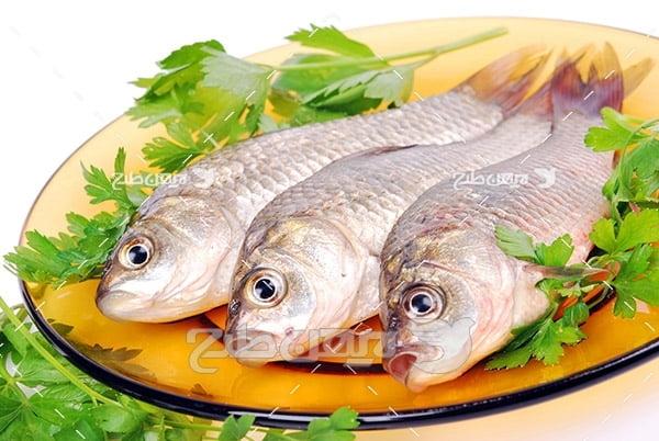 عکس ماهی خام و سبزیجات