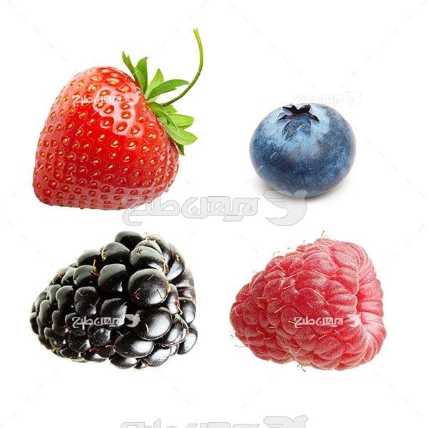 عکس میوه توت و توت فرنگی و بلوبری یا توت آبی