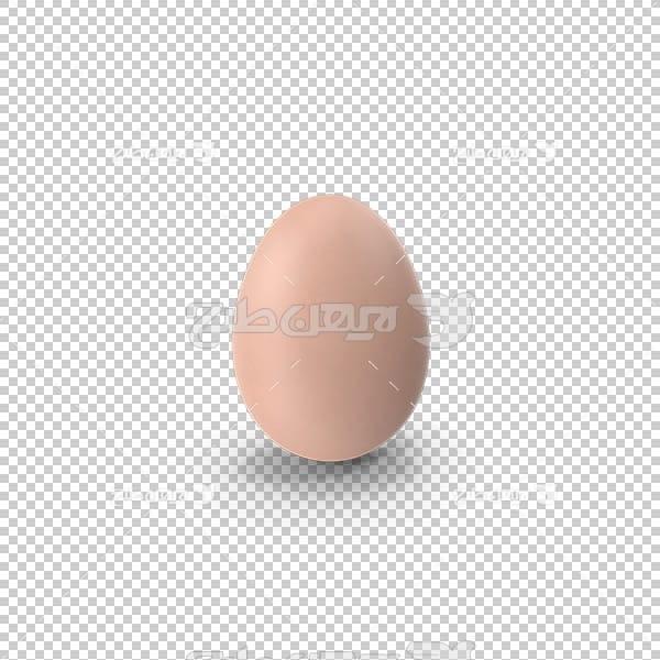 تصویر سه بعدی دوربری تخم مرغ