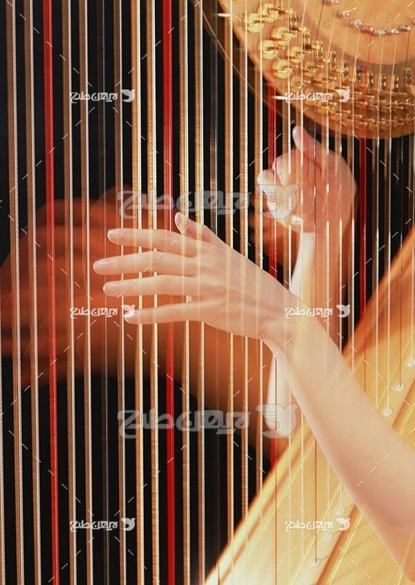 تصویر موسیقی موسیقی ساز تاردار
